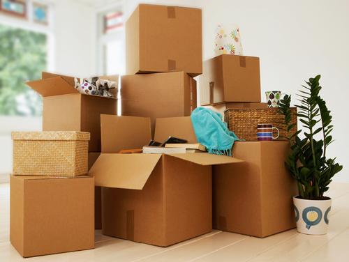 магазин картонных коробок