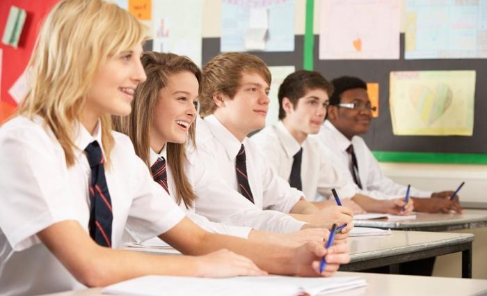 Организация и цели частной школы
