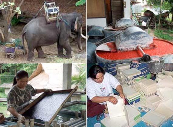 Приготовление бумаги из экскрементов слонов