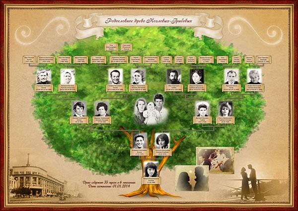 картинку с генеалогическим древом