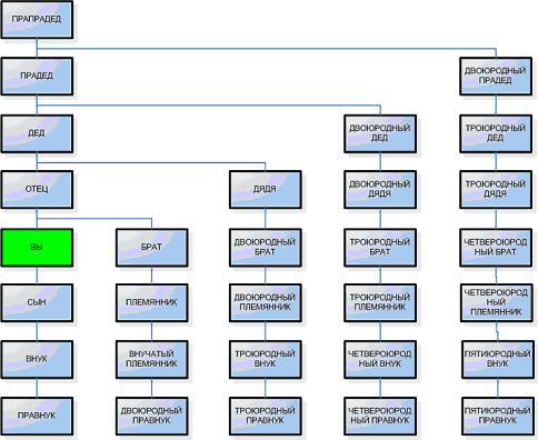 Схема составления генеалогического дерева
