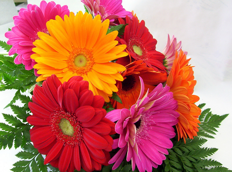 Лучшие варианты цветов на 8 Марта