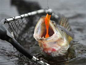Джиговая ловля рыбы, фото