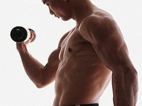 Факторы определяющие силу мышц, фото
