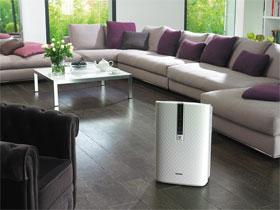 Как выбрать воздухоочиститель для дома, фото