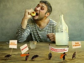Как вывести тараканов из  своей квартиры, фото