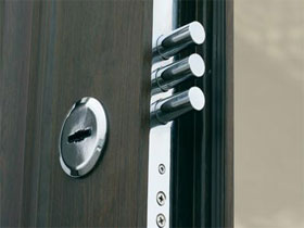 Основные характеристик шпонировнных дверей, фото