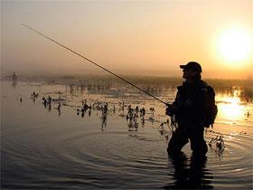 Схема ловли на джиг на мелководье, фото