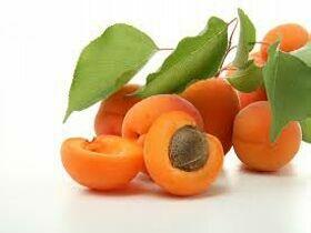 Плоды абрикоса, фото