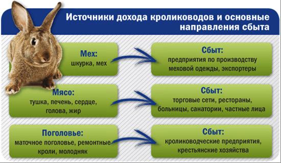Таблица и схема сбыта мяса или меха кроликов