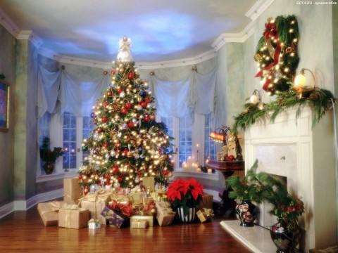 Ставим елку по фэн-шуй – золотые правила