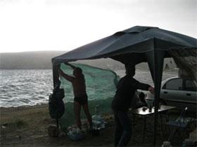 Как бороться с ветром на рыбалке, фото