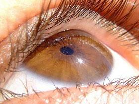 Как узнать характер человека по цвету глаз, фото
