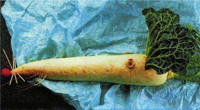 Поделки из овощей своими руками - крыса Лариса из редьки, фото