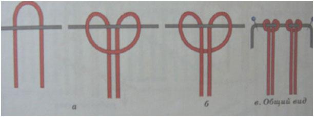 Схема плетения ниток мулине 3, фото