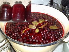 Заготовка черноплодной рябина на зиму, фото